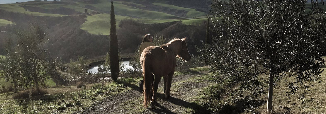 Tuscany with kids, our horse, Stella